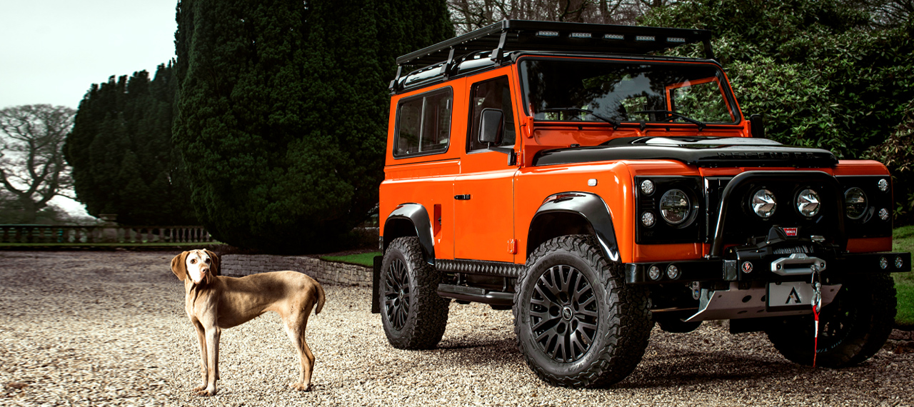 Pheonix Orange and Satin Black D90 with dog to one side.