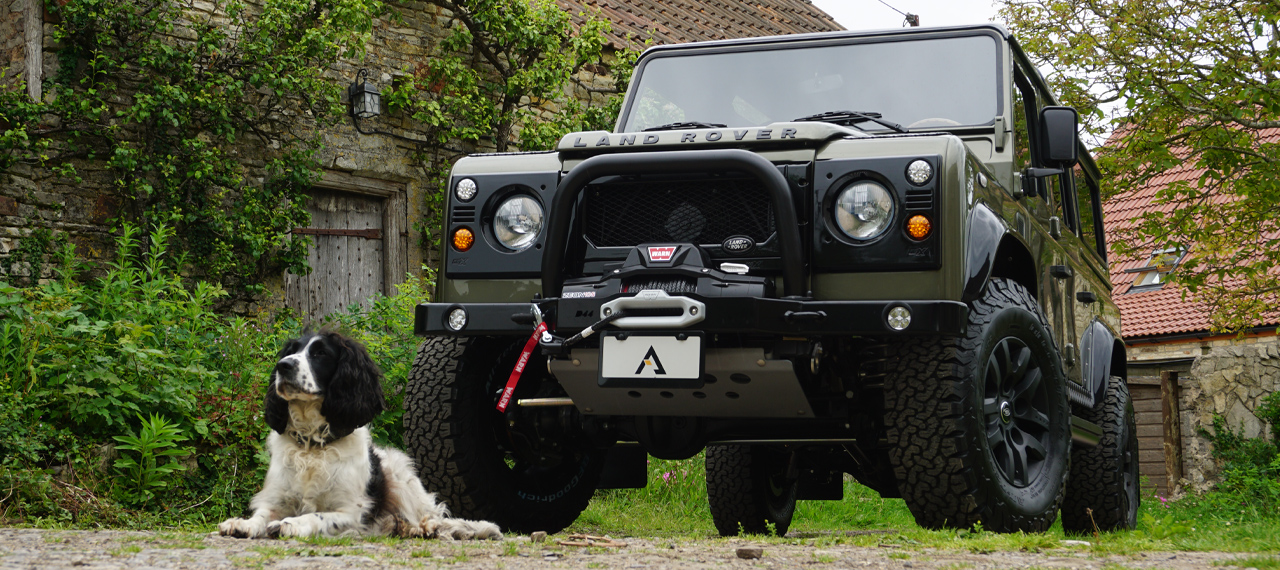 Spaniel sat in-front of a Willow Green Land Rover Defender